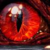 King Heroes sucht dich - letzter Beitrag von Dracon